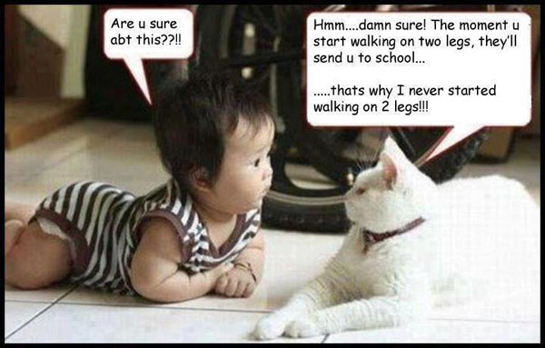 Are u sure abt this??!! Hmm… damn sure.! The moment u start walking on two legs, they'll send u to school… Thats why I never started walking on 2 legs!!!