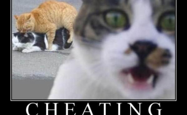 Cheating it hurts everyone.