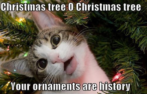 Christmas tree O Christmas tree Your ornaments are history.