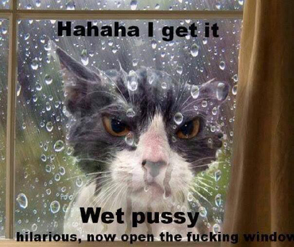Hahaha I get it. Wet pussy hilarious, now open the fucking window.