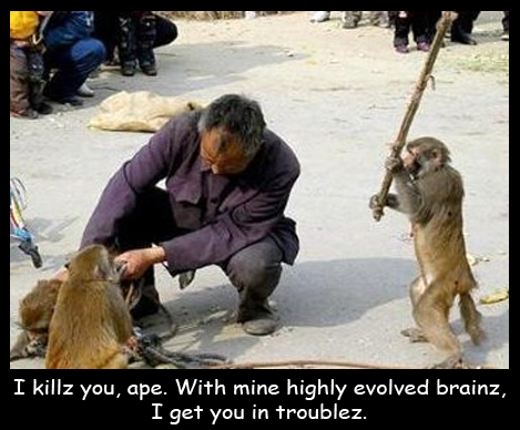I killz, ape. With mine highly evolved brainz I get you in troublez.