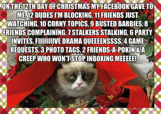 On the 12th of Christmas my Facebook gave to me,12 dudes I'm blocking, 11 friends just watching, 10 corny topics.