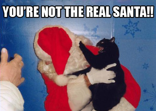 You're not the real Santa!!