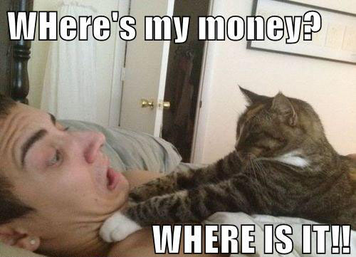 Where is my money? WHERE IS IT!!