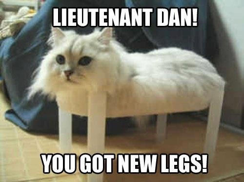 Lieutenant Dan! You got new legs