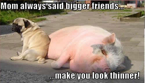Mom always said bigger friends make you look thinner.