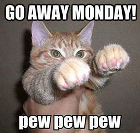 Go away Monday! pew pew pew.