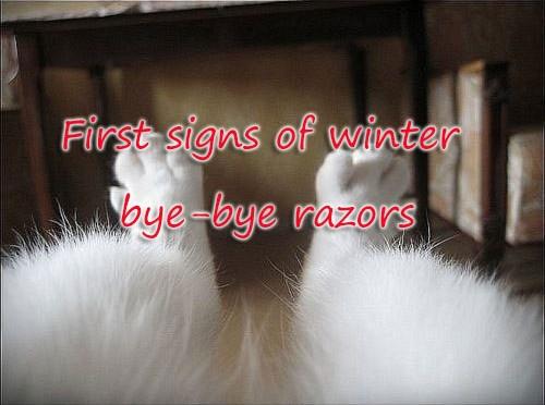 First-signs-of-winter-bye-bye-razors