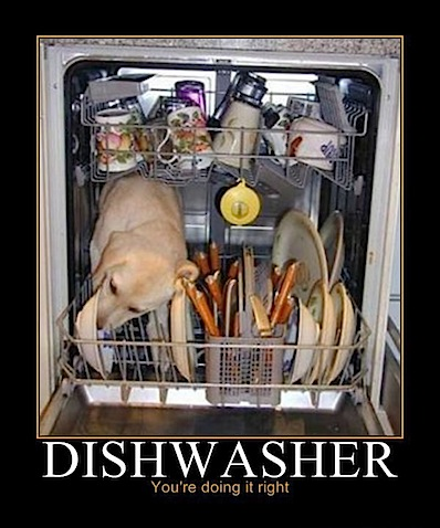 Dishwasher you're doing right.