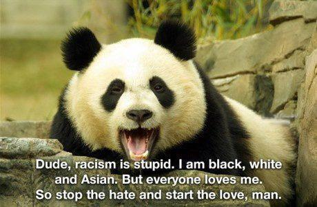 Dude,racism is stupid. I am black, white and Asian. But everyone loves me. So stop the hate and start the love, man.