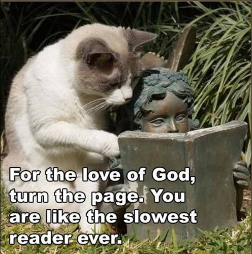 For the love of God, turn the page. You are like the slowest reader ever.