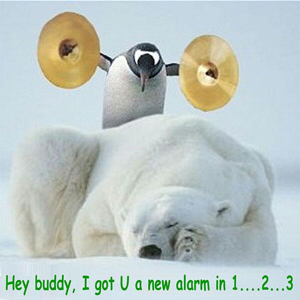 Hey buddy, I got U a new alarm in 1..2..3.