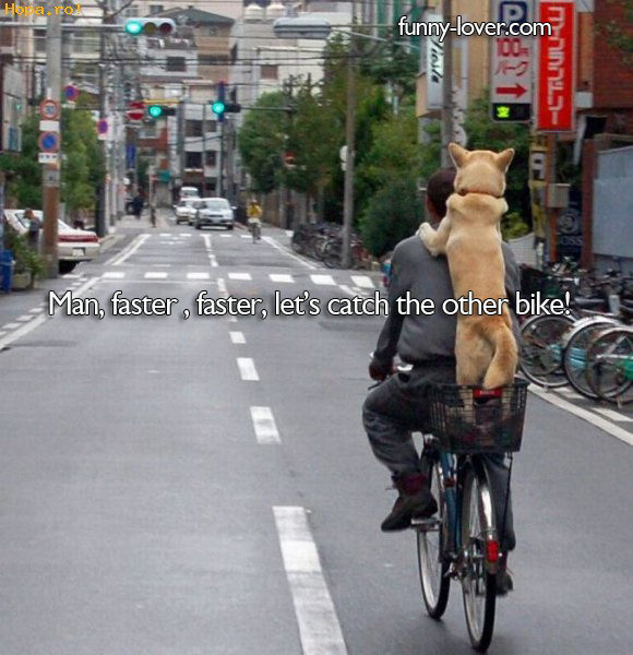 Man, faster , faster, let's catch the other bike.