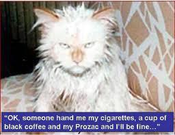 OK, someone hand me  cigarettes, a cup of black coffe and my Prozac and I'll be fine..