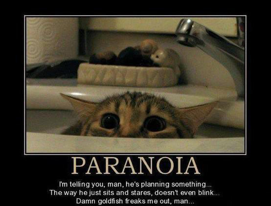 Paranoia – I'm telling you, man, he's planning something…