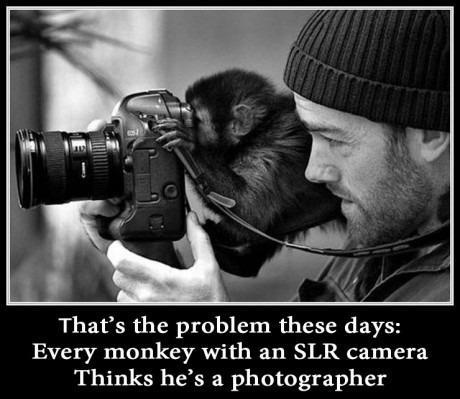 That's the problem these days - every monkey with a SLR camera thinks he's a photographer.