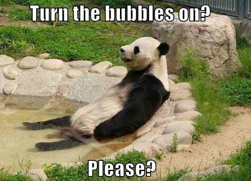 Turn the bubbles on? Please.