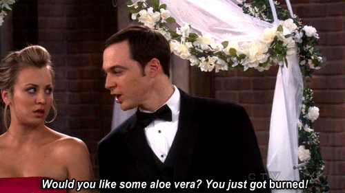 Would you like some aloe vera? You just got burned!