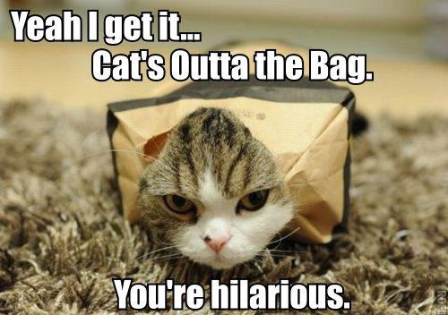 Yeah I get it… Cat's outta the bag.. You're hilarious.