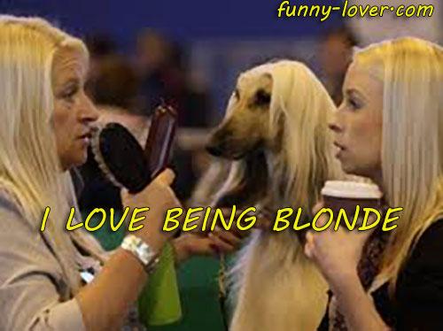 I love being blonde.