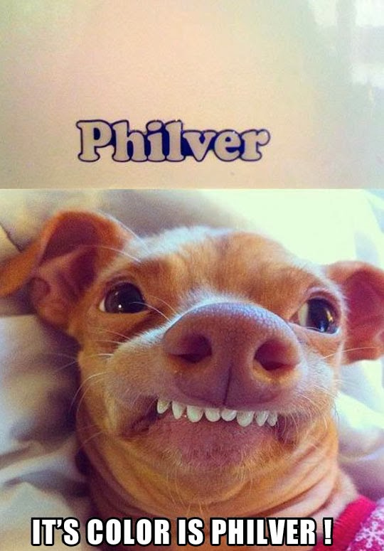 It's color is philver!