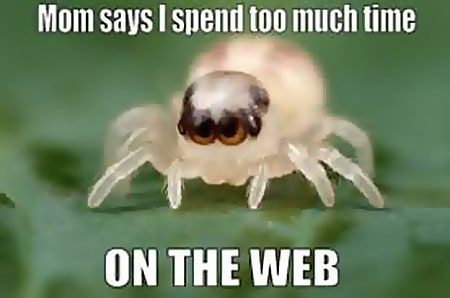 Mom says I spend too much time on the web