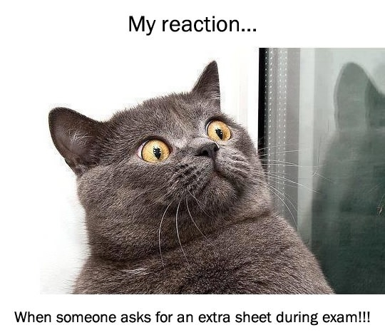 My reaction when someone asks for an extra sheet during exam.