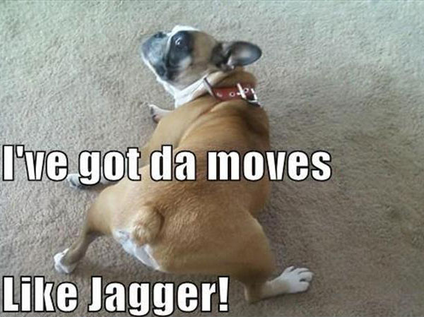 I've got da moves Like Jagger!