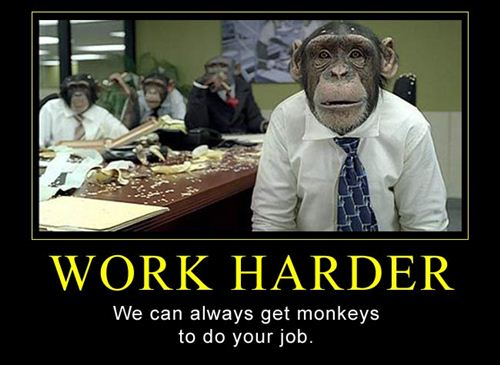 WORK HARDER. We can always get monkeys to do your job.