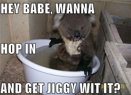 Hey babe, wanna hop in and get jiggy wit it?