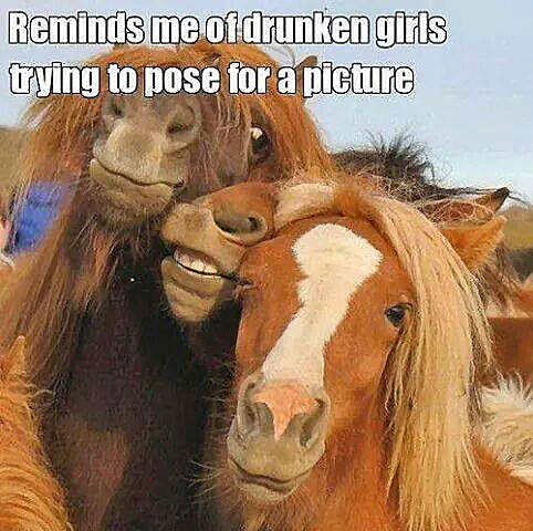 Reminds me of drunken girls trying to pose for a picture.