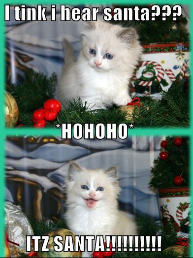 I tink I hear santa??? HOHOHO ITZ SANTA!!!