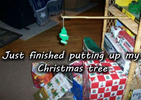 Just finished putting up my Christmas tree.